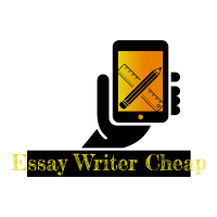 essaywritercheap.net